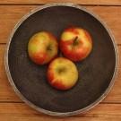 apple-chuthey
